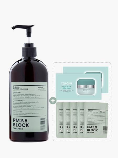 PM2.5 BLOCK CLEANSER